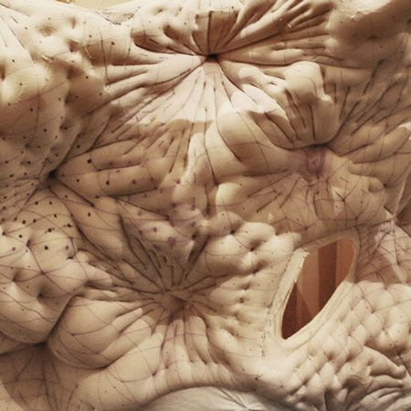 Brendon Carlin and fellow students at the Architectural Association Design Research Laboratory have experimented with liquid plaster set in stitched lycra moulds.