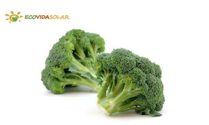 Brócoli o brécol (Brassica oleracea var. italica)
