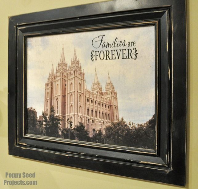 DIY Salt Lake Temple Project.  Only fifty dollars!  Perfect craft idea for Super Saturday or enrichment nights.