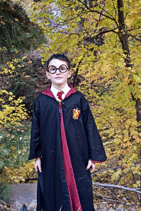 Happy Halloween! {Harry Potter Costumes} in 2020