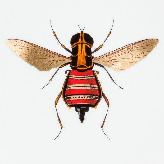 Daandi.com : Assiette porcelaine Haut de Gamme Histoire Naturelle de Animal Fabuleux, motif insecte 4, fabriquée à la main en France