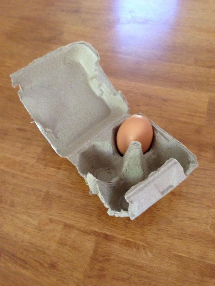 Save precious fridge space by cutting the egg carton in half or quarters when running low on eggs. pinned with Pinvolve
