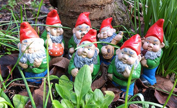 Female Garden Gnomes: 142 Best Images About Gnomes On Pinterest