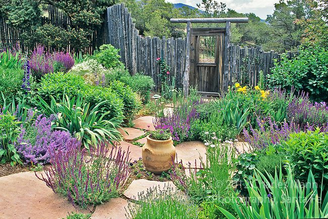 Landscape Architect and garden designer Catherine Clemens conceived and created this colorful and drought tolerant xeriscape garden and home landscape scheme at her home in Santa Fe, New Mexico.