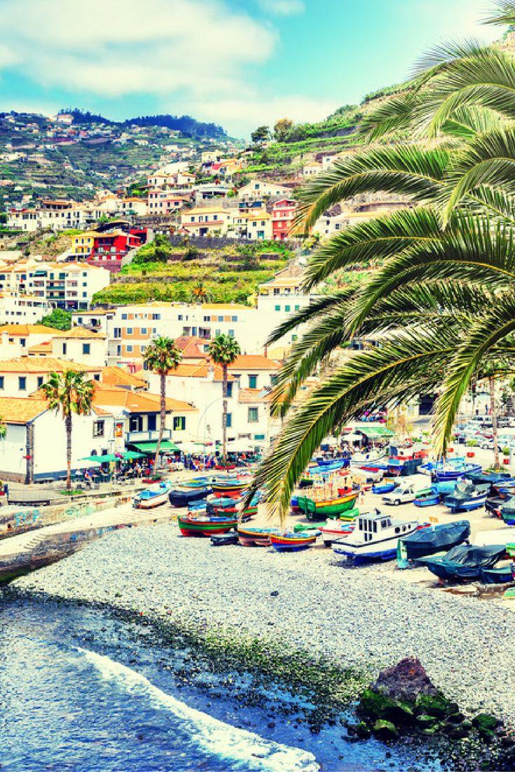 🌺 Bloemeneiland Madeira 🌺 Verblijf jij hier al in de herfstvakantie? Vergeet vooral niet een excursie te maken waar jij dolfijnen, of walvissen spot in de Atlantische Oceaan 🐬🐳 Kijk snel: https://ticketspy.nl/deals/herfstvakantie-knaller-8-dagen-madeira-va-e413/