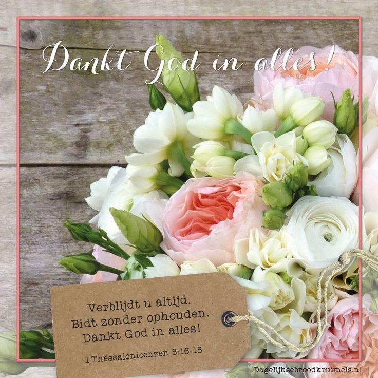 Dankt God in alles! Verblijdt u altijd. Bidt zonder ophouden. Dankt God in alles! 1 Thessalonicensen 5:16-18  #Bidden, #Dankbaarheid, #God  http://www.dagelijksebroodkruimels.nl/1-thessalonicensen-5-16-18/