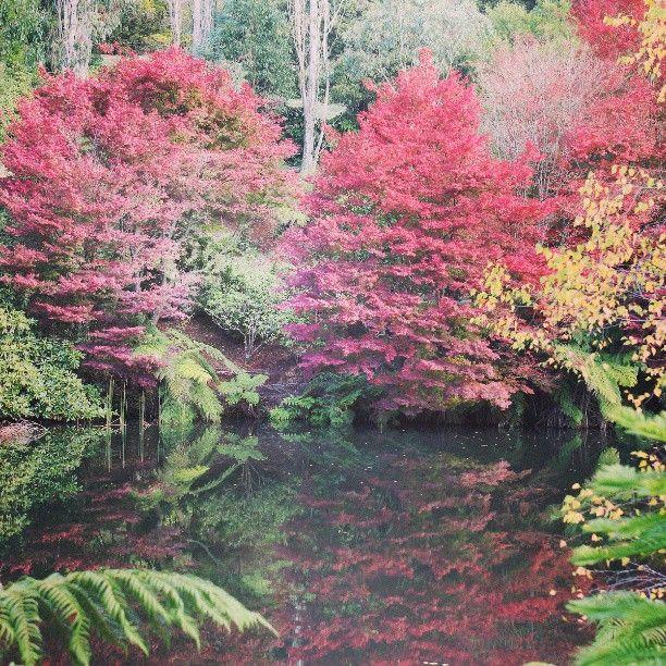 #photo #tracking #slowlife # autumn