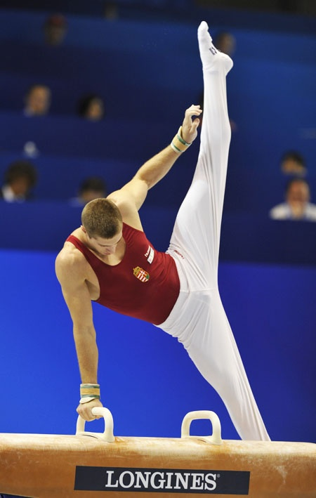 Berki Krisztián. Hungarian Olympic Champion in Men's Pommel Horse (London, 2012)