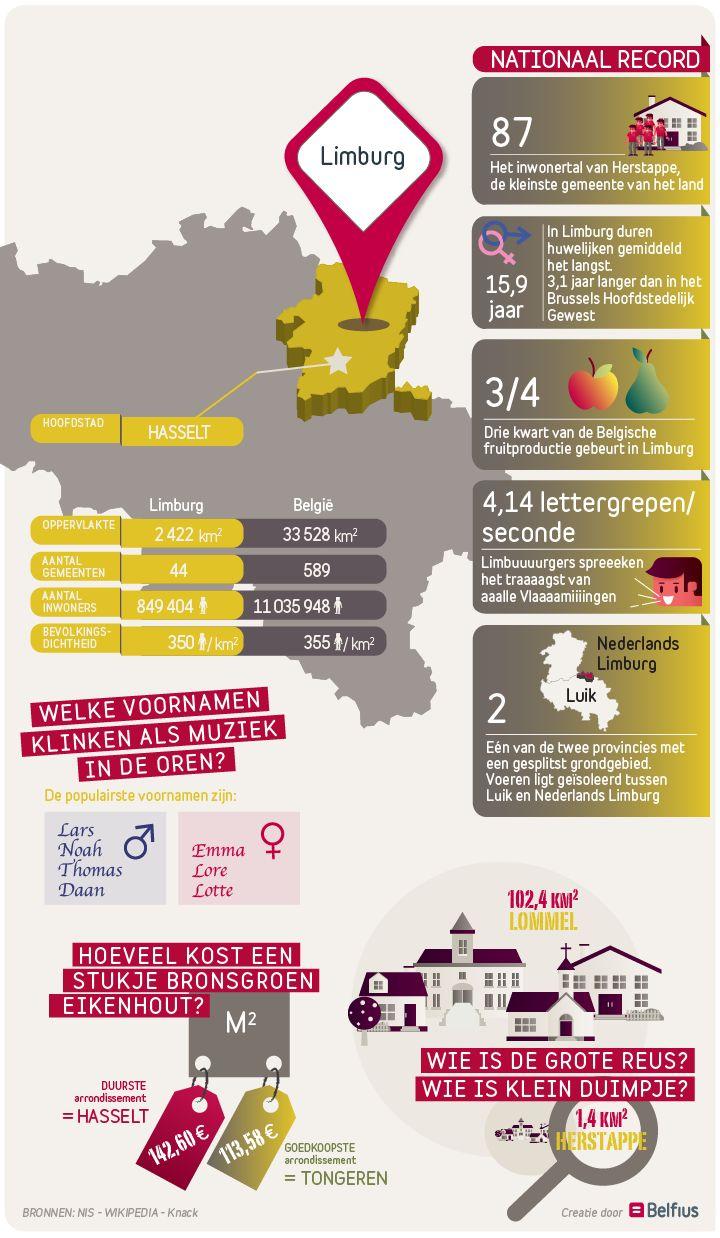 De kleinste gemeente van het land, de gemiddeld langst durende huwelijken, de fruitigste provincie: Limburg spant op meerdere vlakken de kroon. Bekijk de infographic voor meer details over deze provincie...