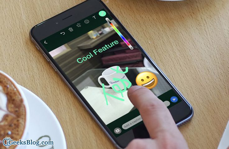 Add emojis text on photosvideos in whatsapp on iphone