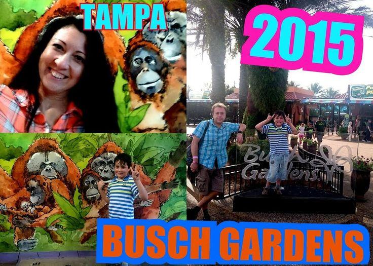 USA\Наши приключения в Парке развлечений Busch Gardens 2015 \USA \Busch ...
