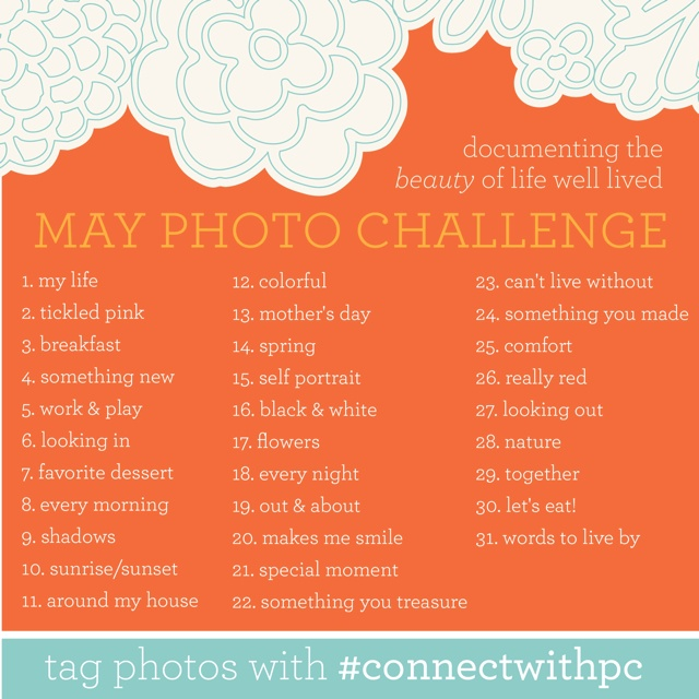 May's Daily Photo with Paper Coterie.Photos Inspiration, 2012 Photography, Photos Ideas, Photography Challenges, Photos Prompts, May Photos Challenges, Daily Photos, Photography Ideas, Complete Challenges