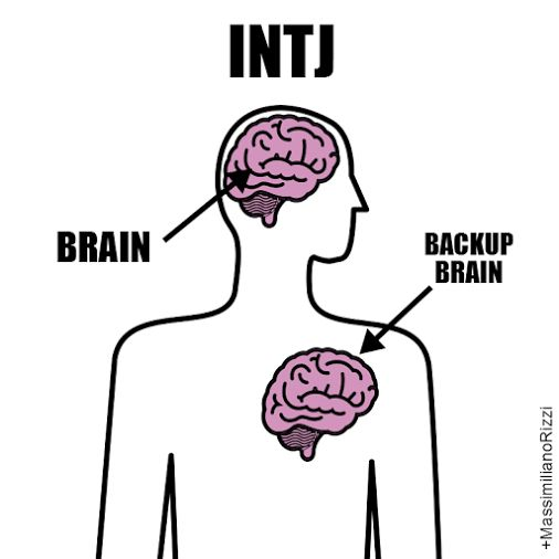 INTJ Brain, backup brain. Hahaha I'm not cold, just double-brained- like an intellectual version of The Doctor ;)