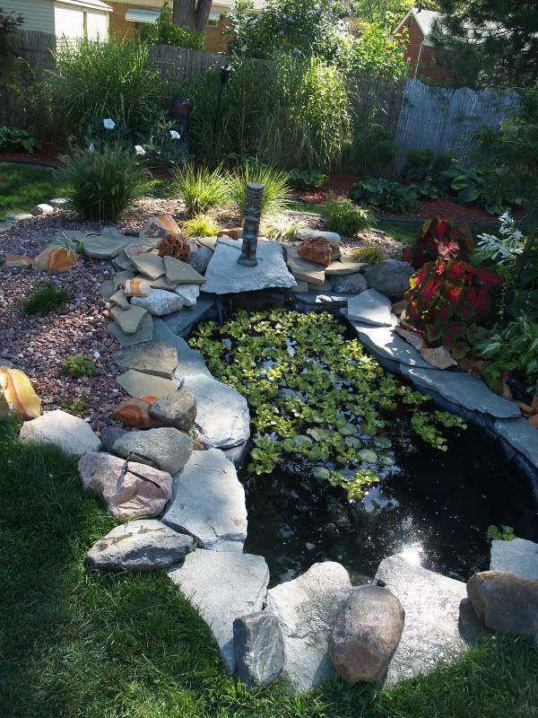 This looks like my pond only nicer lol koi pond ideas for My koi pond