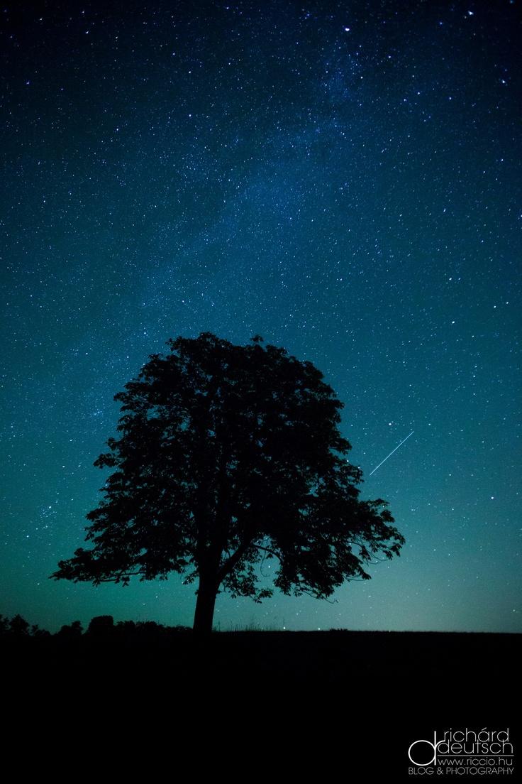 Under the Sky at night:  http://riccio.hu/posts/ejszaka-a-csillagos-eg-alatt