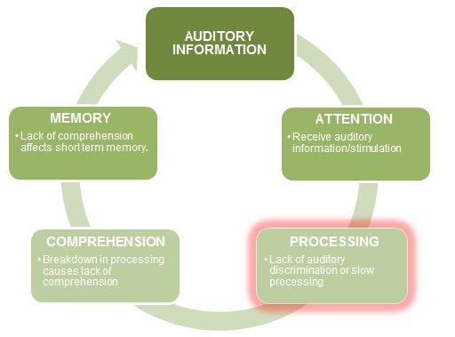 adhd and auditory process What is auditory processing disorder auditory processing disorder (apd, or capd for central auditory processing disorder) is a condition that impacts the ability to process subtle differences in word sounds.