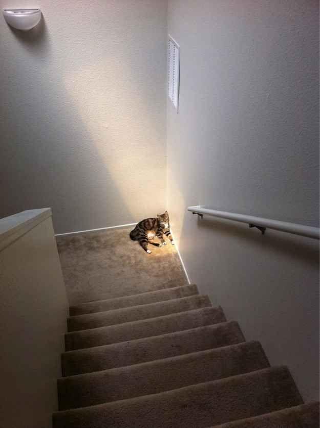 Encuentra tu rayo de luz