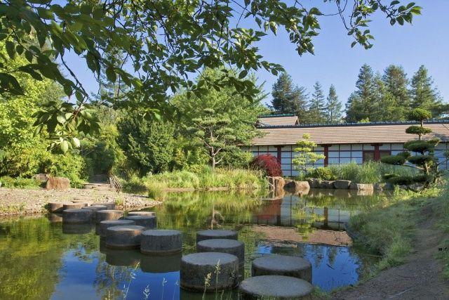 Jardin Japonais de l'Île de Versailles  à Nantes © fran6-44