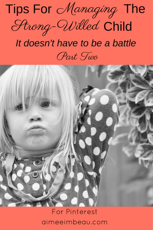 It Doesn't Have to be a Battle: Tips for Managing the Strong-Willed Child Part Two | A Work of Grace Aimee Imbeau