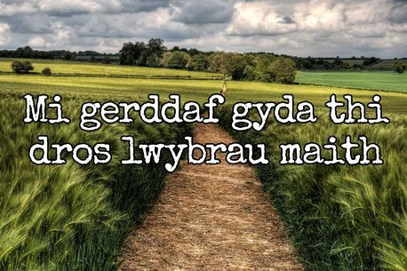English translation from Welsh: I'll walk beside you over many paths