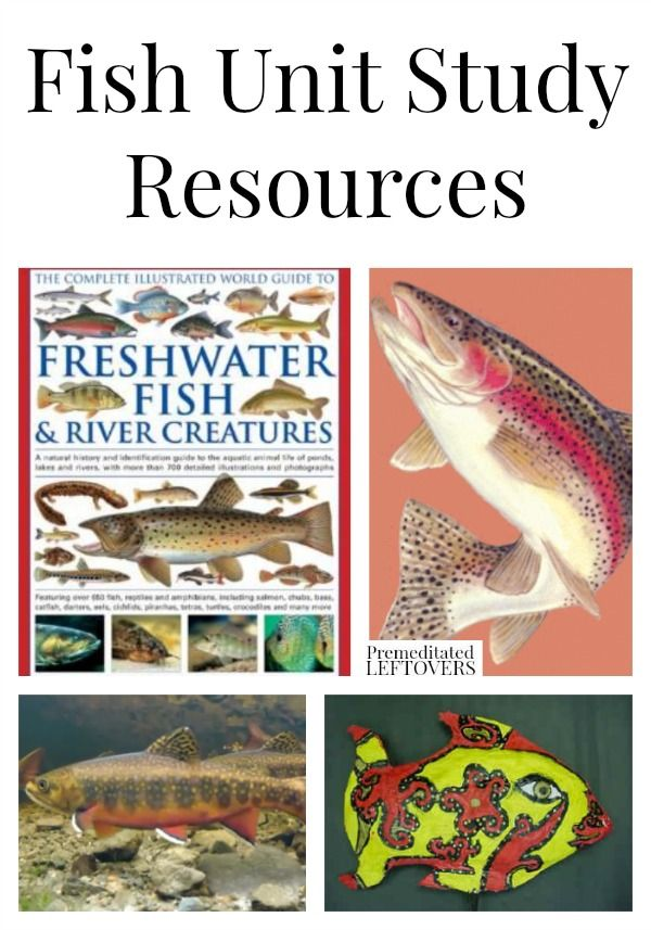 Fish Unit Study Resources