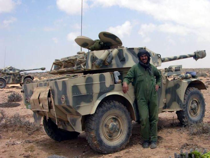 Moroccan Eland 90.