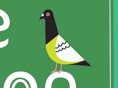 Pigeon by Brad Woodard