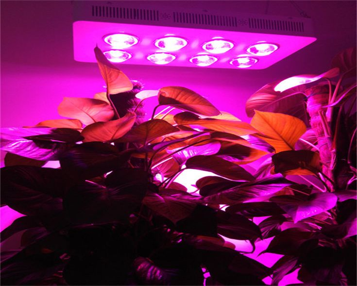 G3 PRO 400w cob led lamp/ cob led plant grow light lamp/ 8*50w led plant lamp grow lights