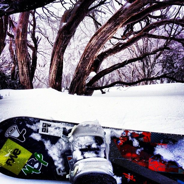 Photo by cannjos  I miss the days where my only worries were about snow conditions #flashbackfridays #powderday #mtbuller