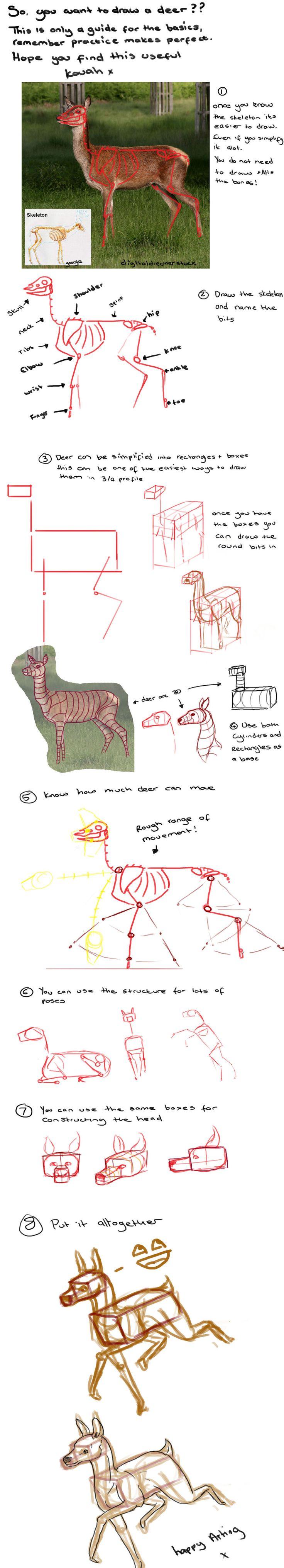 Basic+Deer+Tutorial+by+kovah.deviantart.com+on+@deviantART