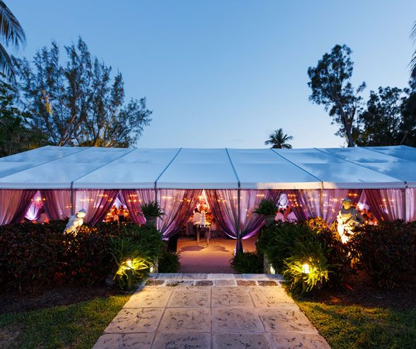 Purple Backyard Wedding : Wedding, Beach Wedding, Purple Outdoor Ceremony, Purple Wedding