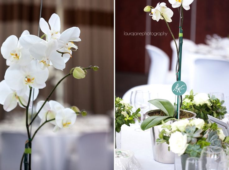 Fairway Hotel Wedding – André and Karin, 24 March '12