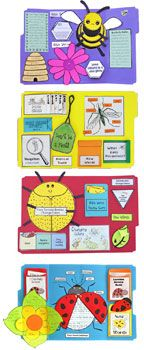 Christian-based set of studies introduces children to variety of amazing insects. Each lesson emphasizes a Biblical concept relating it to a specific insect. Lapbooking, VBS and other SS free samples