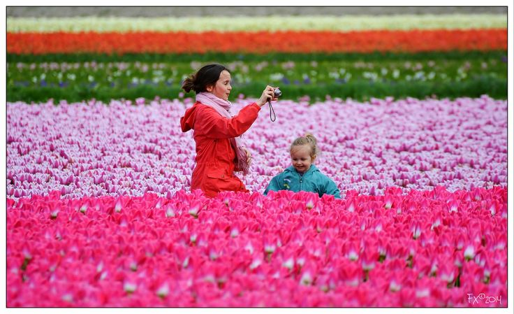 Happiness in the Tulips fields