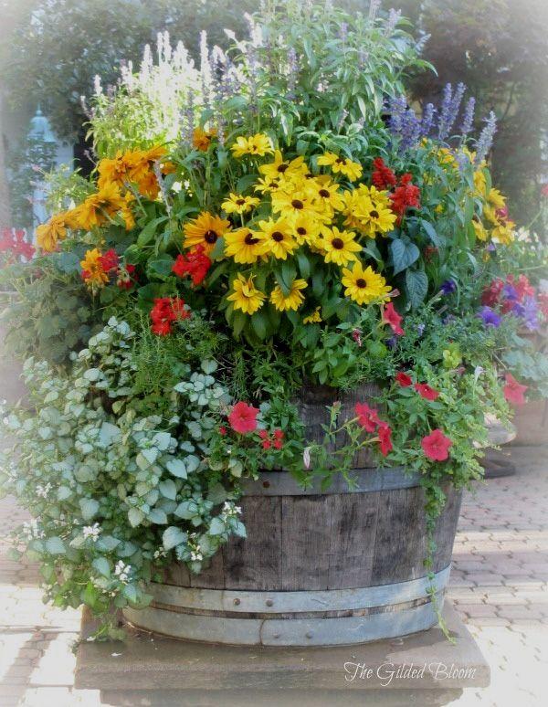 Understanding Container Gardening Weinfass Garten Blumen Im