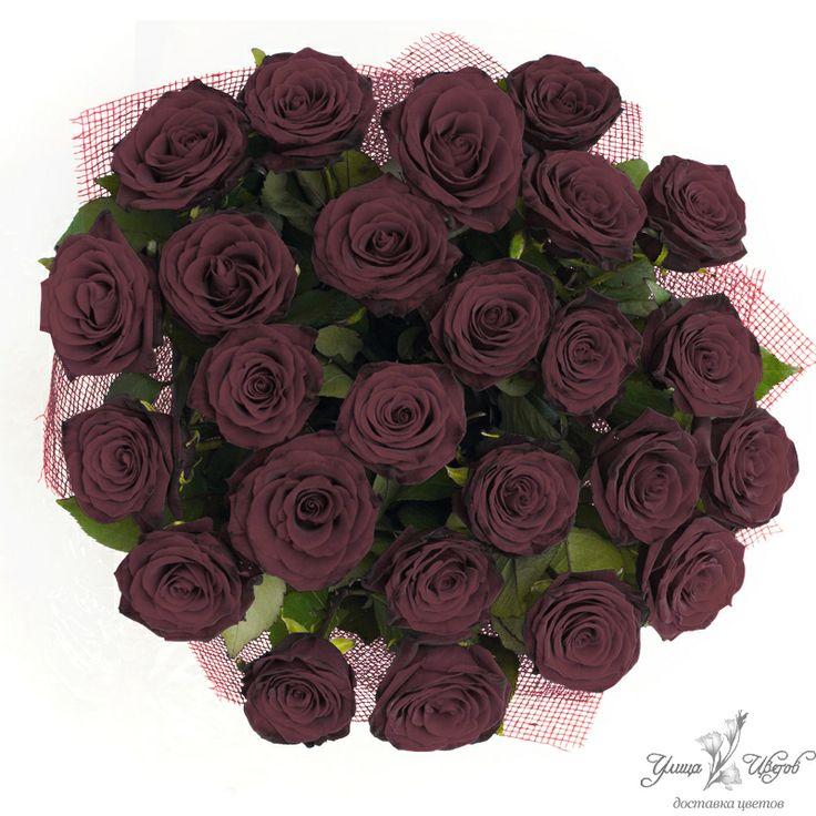 черные розы - Поиск в Google
