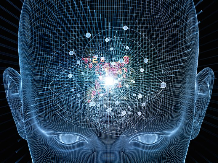 Permalink to image of The Evolution of Consciousness Part 1: The Level of Ordinary Consciousness