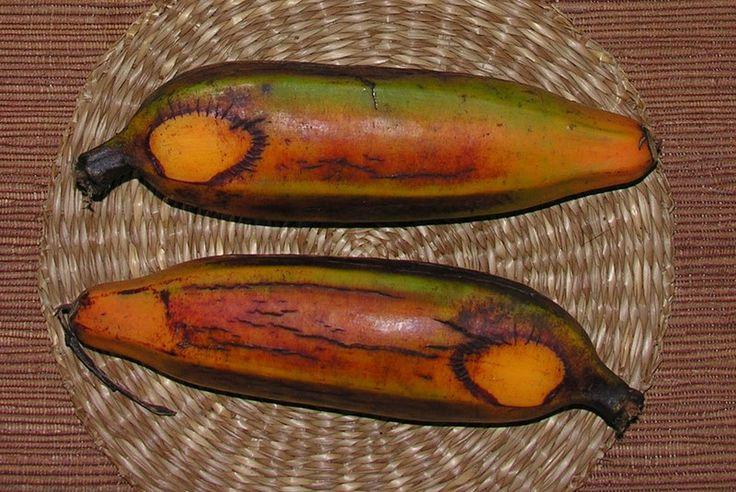 Gratin de fei banane plantain au lait de coco recettes for Banane plantain au barbecue