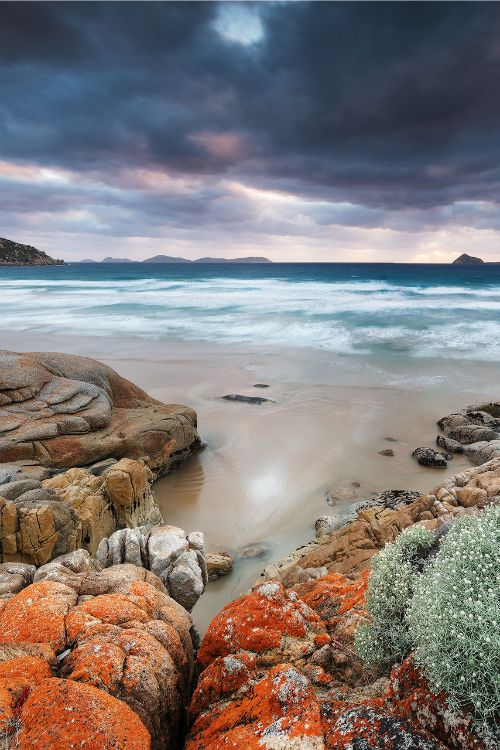 one of many beautiful bays in this national Park Whisky Bay, Wilson's Prom. Victoria. Australia