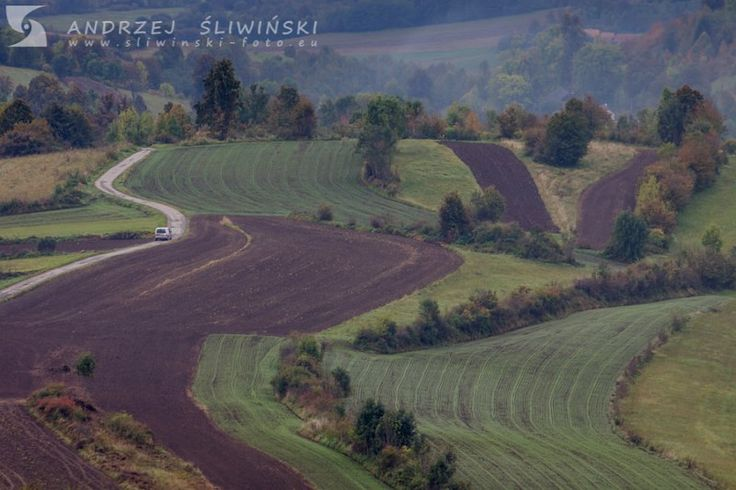Fields on the slopes of Polana Mountains, Slovakia.