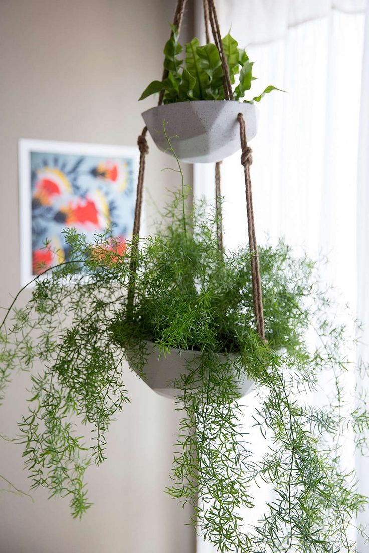 367 best images about FabFinds! No. 3: Hanging planters on Pinterest