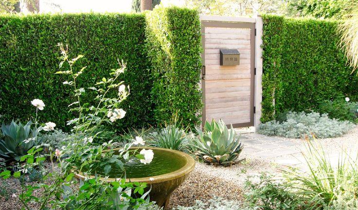 Разработанный Наоми Сандерс, этот городской проход был вдохновлен садами испанской Андалузии. Кайма из суккулентов дополняет гравийное покрытие, а небольшой фонтан циркулирует воду и добавляет дизайну элемент спокойствия.