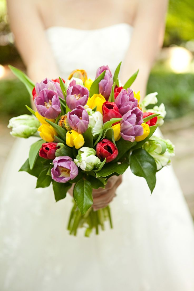 cjsoffthesquare:    bouquet of the week   Mandy Whitley  ~~~ Tavi: Pink Tulips, Yellow Tulips, Purple Tulips, White and Green French Tulips ~~~