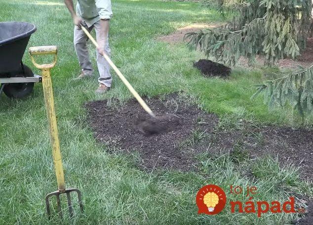 Krásny trávnik za 1 týždeň: Profesionál ukázal jednoduchý trik, ako zakryť škvrny a urýchliť rast trávy v rekordnom čase!