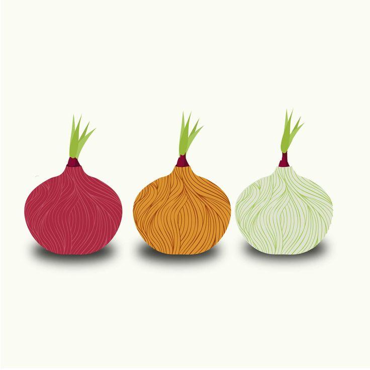 Podemos sembrar cebollas durante todo el año. Las cebollas son un tipo de planta que aguantan bien las temperaturas bajas, por lo que podemos preparar...