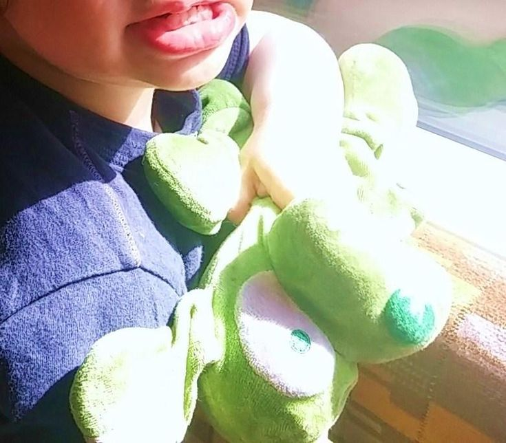 Lost on 29 May. 2016 @ On a train from Hampton court to London Waterloo. My son lost his beloved green puppy soft toy teddy (with floppy ears) on the train From Hampton Court to London Vauxhall/Waterloo. If anyone found it please get in touch. Thanks so much Visit: https://whiteboomerang.com/lostteddy/msg/s25hd7 (Posted by Maria on 03 Jun. 2016)