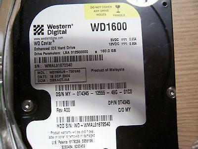 Western Digital WD Caviar WD1600 160GB ATA-100 8GB Cache 7200 RPM 40 Pin IDE