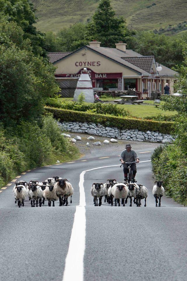 Leenane, Connemara, Ireland
