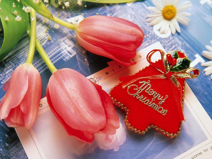 tietokoneen taustakuvia - Hyvää joulua: http://wallpapic-fi.com/korkea-resoluutio/hyvaa-joulua/wallpaper-2757