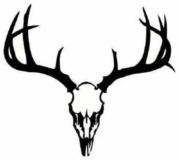 Dear Skull   Deer Skull image - vector clip art online ...